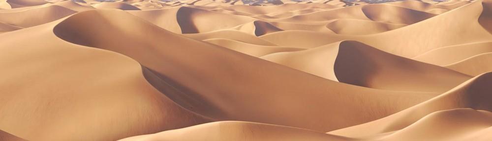 çöl desert